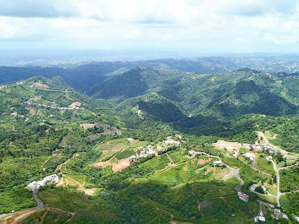 Aerial shot - Toro Verde 2