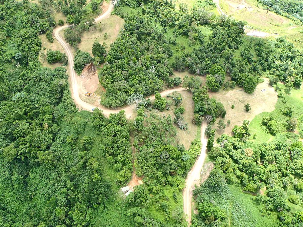 Aerial shot - Toro Verde 3