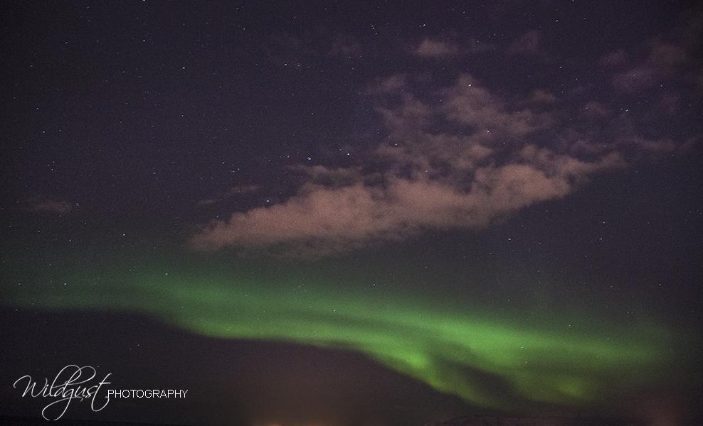 IMG_2355w2Aurora Borealis-Seltjarnarnes-Iceland