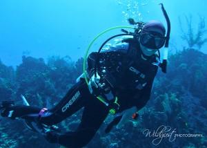caymandiveAna1