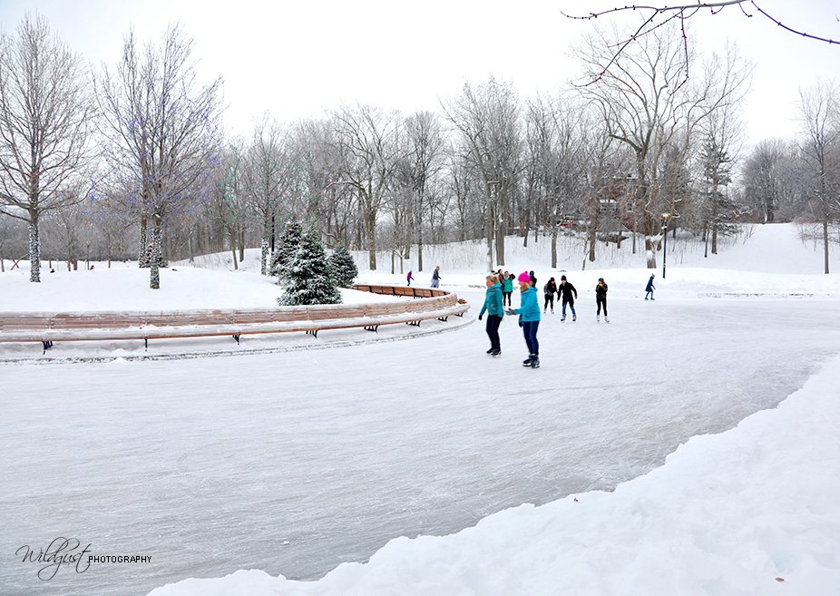 ParcMontRoyal.Montreal.Canada.iceskating.
