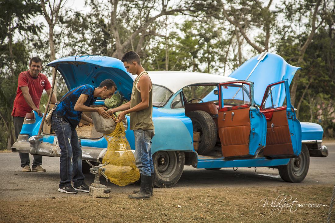 Cuba.Vinales.cars