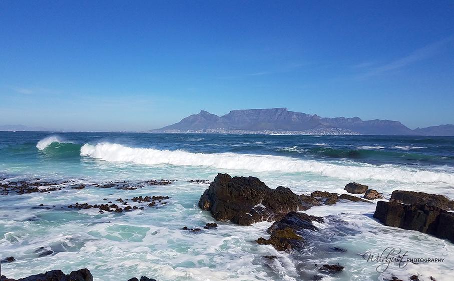 SouthAfrica.RobbenIsland.145241w