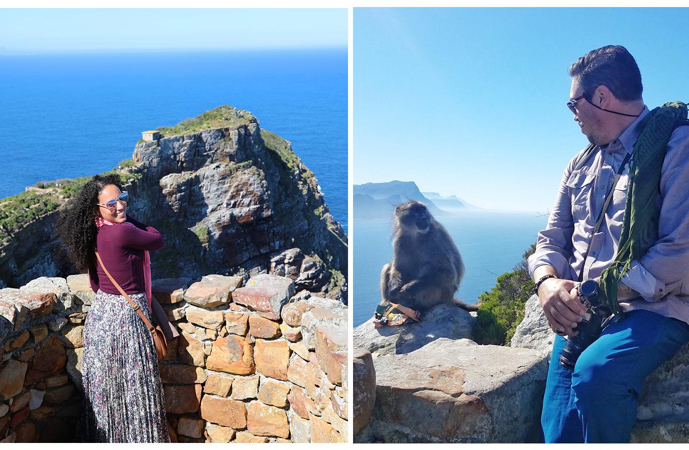 CapePoint.SA.baboon.